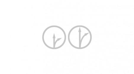 Cisaille à zinc universelle démultipliée avec lame de 75 mm, 300 mm - Schemas sens cisaille