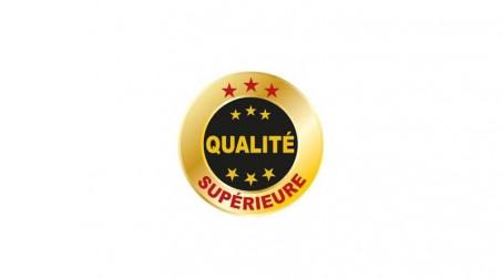 Hachette de charpentier forgé monobloc, manche cuir - Logo QS Francais